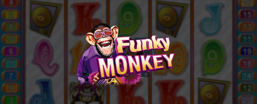 Get a taste of the groovy 60s with the online Slot machine, Funky Monkey. This rocking game features some pretty cool wacky drum playing Monkeys who definitely know how to carry a tune. This crew of primates plays in a band and if they hit the right notes, what they deliver will be music to your ears. The louder the applause levels their beats generate, the more free games you score, giving you added chances of making money. Play with Funky Monkey today and enjoy the sound of music with your winnings.