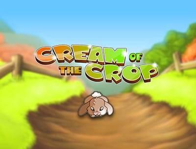 Cream of the Crop